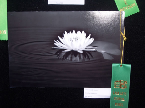 HONORABLE MENTION BETH BUTTON LANDSCAPES & SCENICS